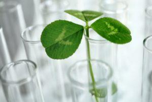 ciencia plantar treboles